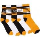Globe Socks: Bengal Crew Sock 5PK Gold